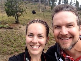 Look...! A bison!